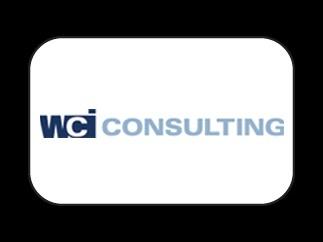 WCI Consulting